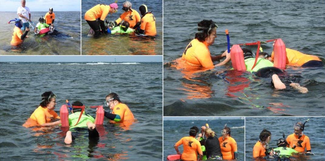 people snorkeling