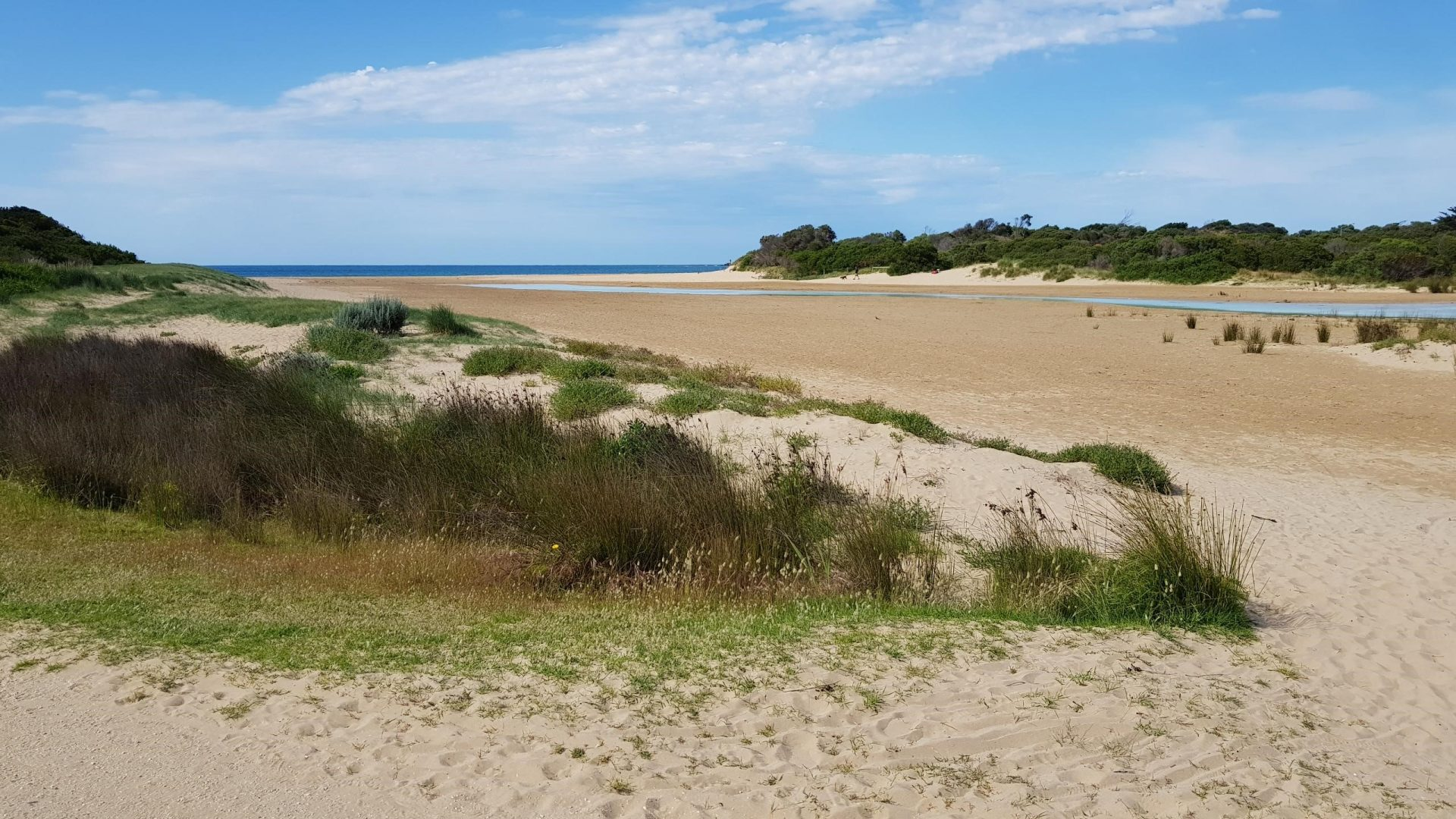 sand dune - river mouth
